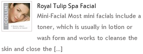 Royal Tulip Spa